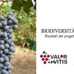 "Expansion and enhancement of varietal biodiversity of the ""Colli Piacentini"" wine district"