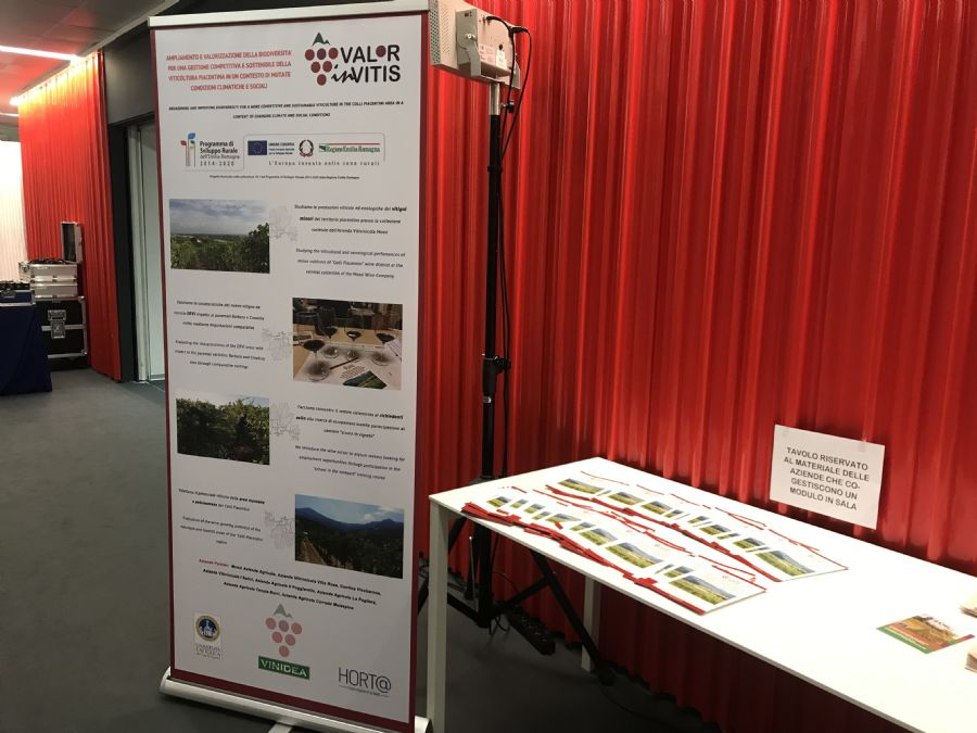 Roll-up and flyers of ValorInVitis project