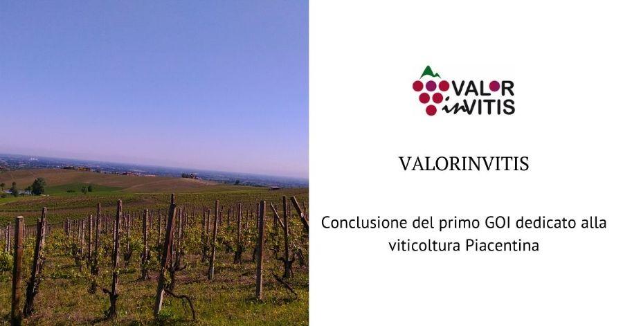ValorInVitis. Bilancio positivo per il primo GOI dedicato alla viticoltura Piacentina
